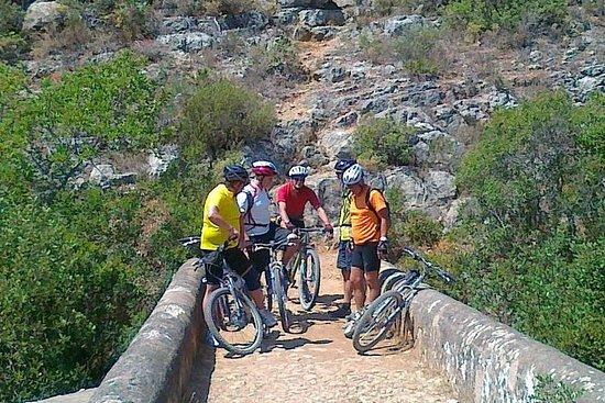 Visite en vélo sur les sentiers entre...