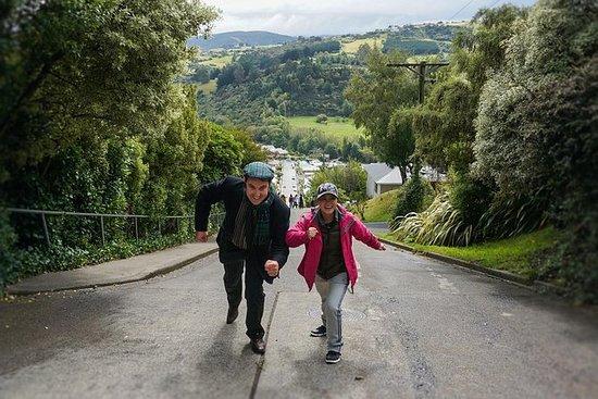 Halvdagers ikoniske Dunedin City Tour
