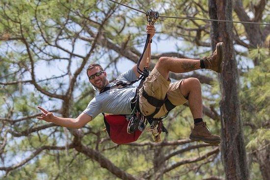 Curso de aventura TreeUmph