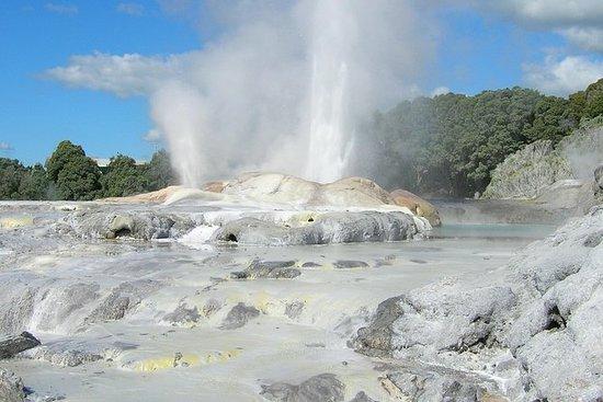 Privat helgedag Rotorua tur fra...
