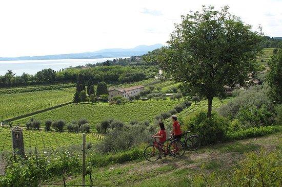 Tour in e-bike del Lago di Garda