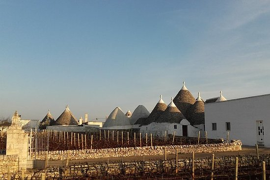 Full-Day Tour: Discover the Valle...