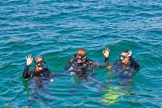 Discover Scuba Diving (mergulho) em...