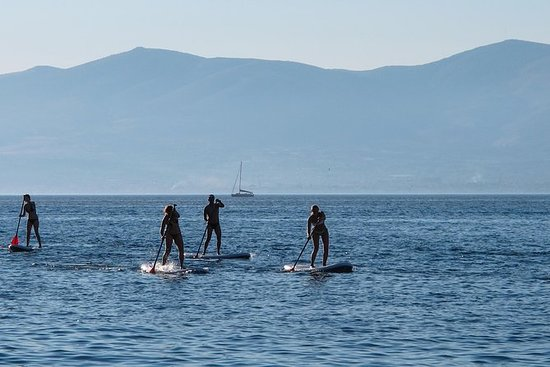 Split Stand Up Paddleboarding Tour