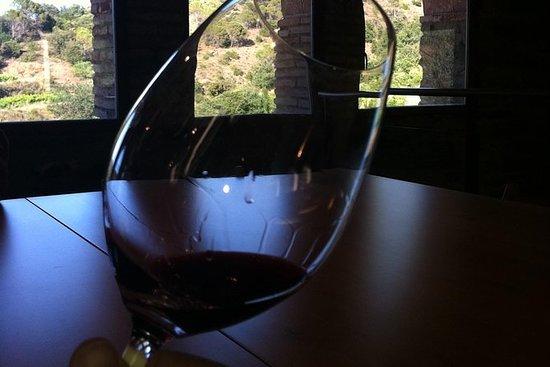 Dagvullende privé wijntour en ...