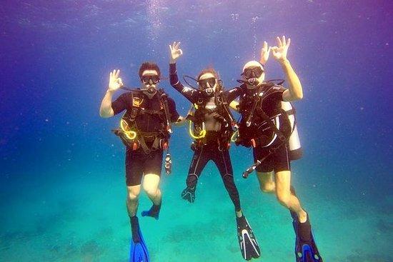 Oppdag dykking i St. Thomas