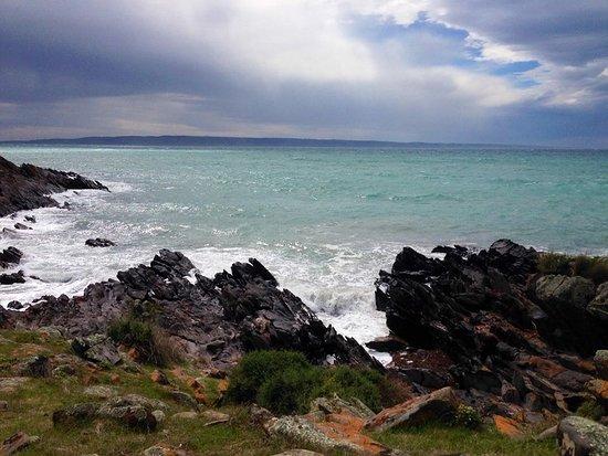Antechamber Bay Φωτογραφία
