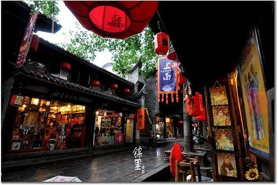 Visite privée d'une journée à Chengdu