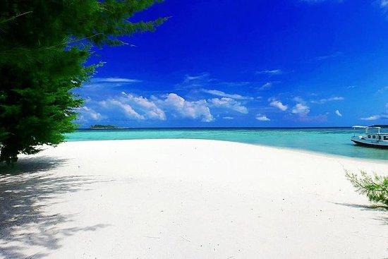 Visite privée: plages de Bali