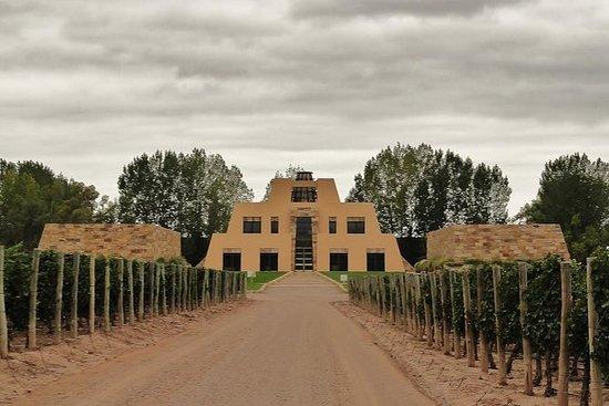 Excursão vinícola em Catena Zapata...