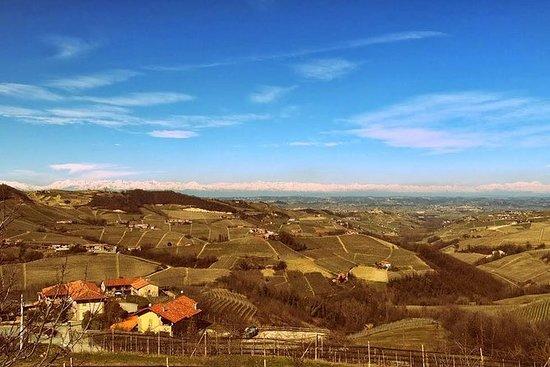 Degustazione vini e tour della cantina piemontese da Torino