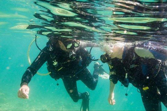Pula, pacchetto Discover Scuba Diving