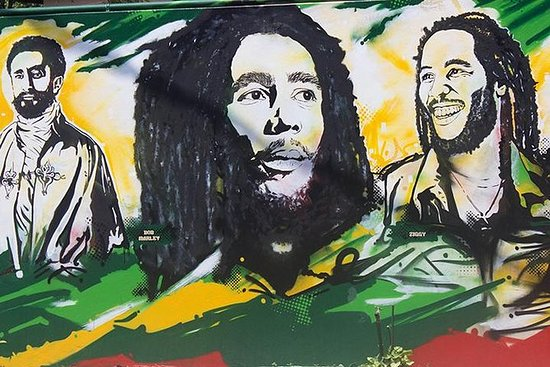 Bob Marley Museum and Kingston...