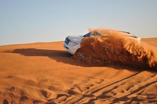 Ras el Khaïmah: safari dans le...