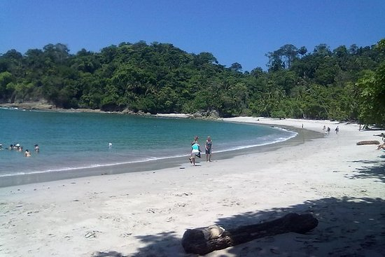 Manuel Antonio National Park Dagstur ...