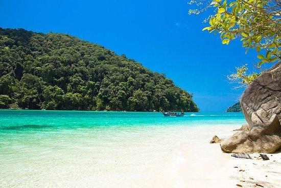 Full Day Surin Island med Speedboat ...