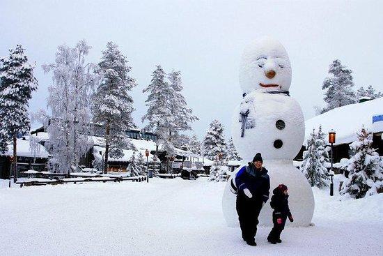 Rovaniemi Snowmobile Tour: Besøg en...