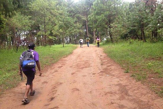 Hiking Day Trip to Champadevi Hill...