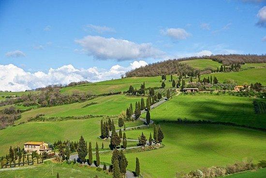 Montepulciano og Pienza Toscana Full Day Tour fra Roma