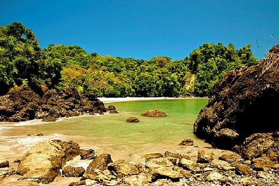 Day Trip to Manuel Antonio National...