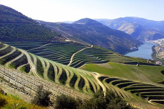 Full-Day Douro Valley Discovery...