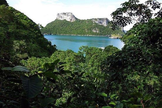 Día completo de las islas de Ang...