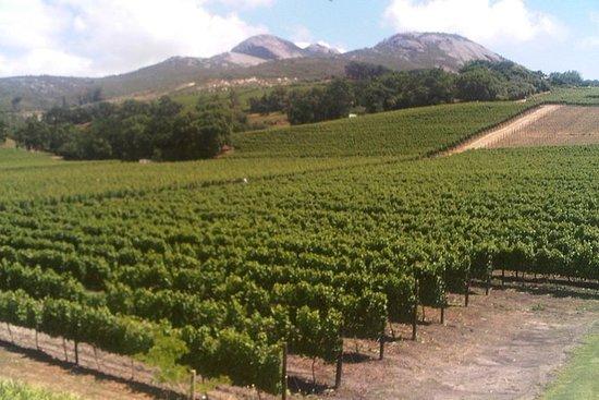 Private Cape Winelands guidad dagstur ...