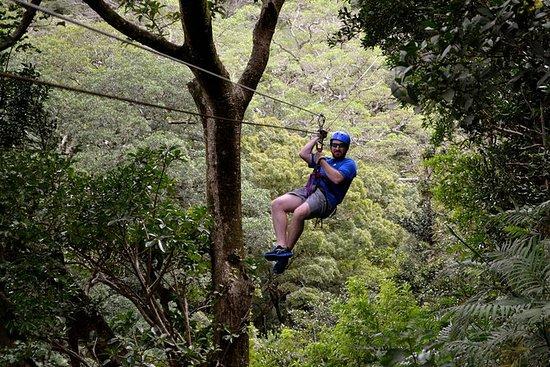 Tour del volcán Guanacaste desde el...