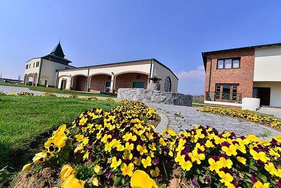 フルードワインツアー、ベオグラードからのFruska gora