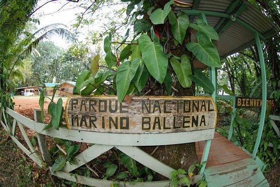 Parc national Marino Ballena...