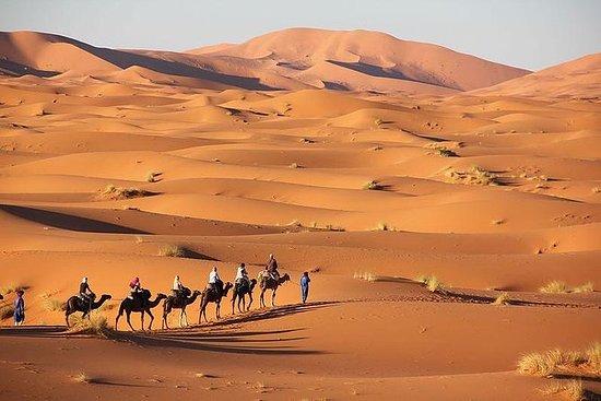 马拉喀什3日游到Merzouga Erg Chebbi沙漠之旅