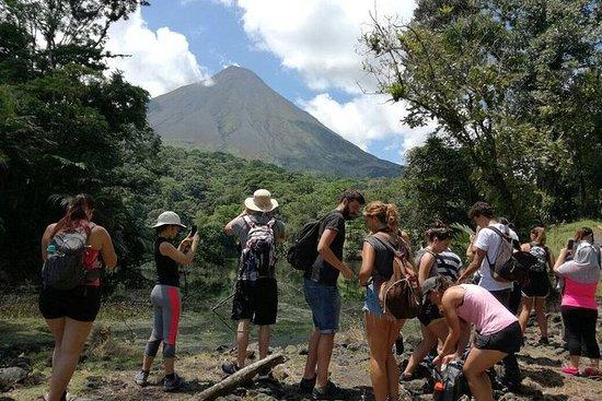 Caminata por el volcán por la mañana...