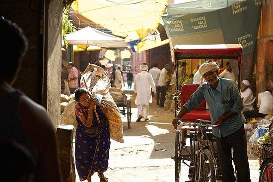 Cyclin'Jaipur - Pink City Heritage...