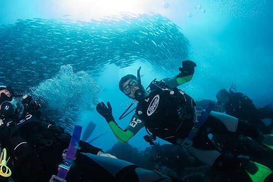 7 Days Diving and Hiking on the...