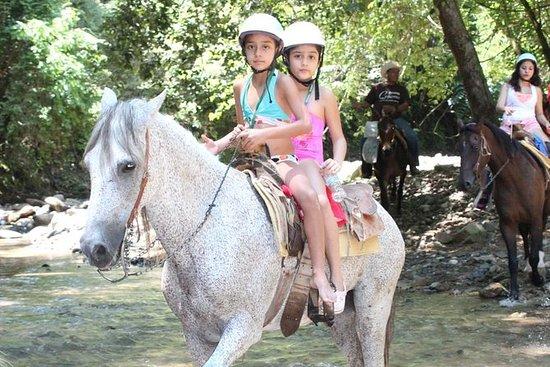 Ridningstur på hästar