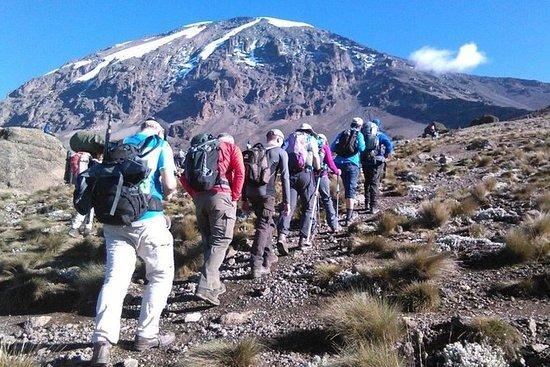 7 Day Ultimate Kilimanjaro Climbing...