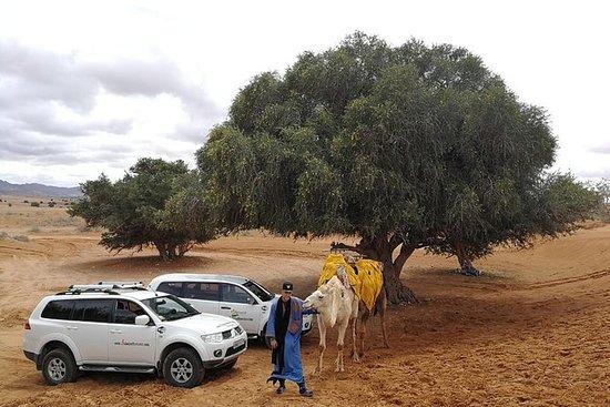 Tagesausflug in die Kleine Sahara