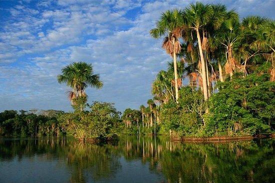 2 giorni 1 notte - Tambopata Jungle