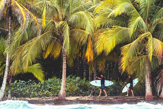Selina Surf Club Playa Bocas del Toro...