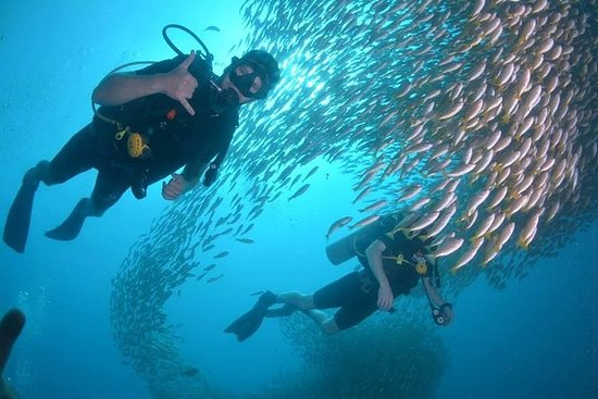 PADI Open Water Course on Phi Phi...