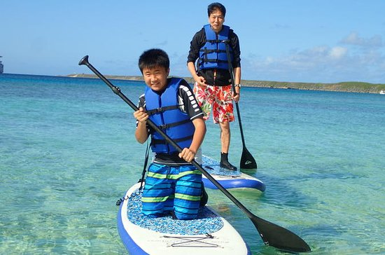 Stand Up Paddleboard Lesson and...