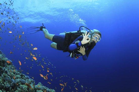 Descubra o mergulho com 2 mergulhos...