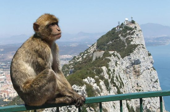 From Costa del Sol: The Gibraltar...