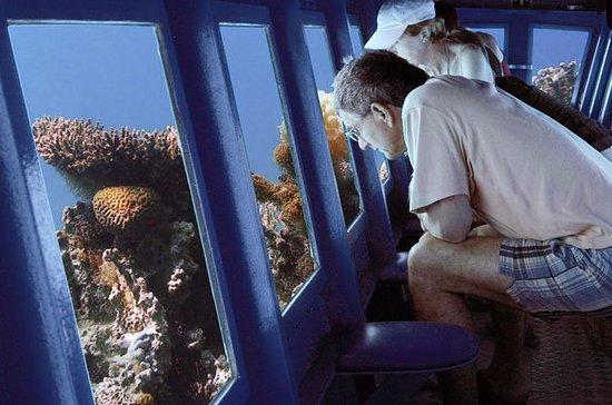U-Boot-Exkursion in Sharm el Sheikh
