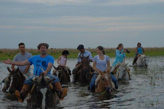 Rijden met de Gauchos in Argentinië