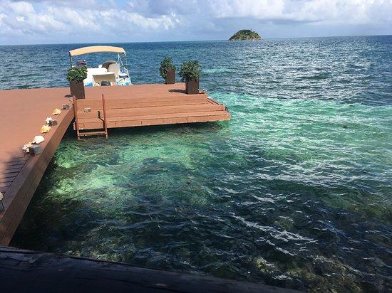 Deep Blue Restaurant Photo