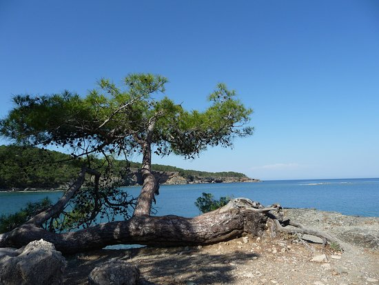Turkish Mediterranean Coast Photo