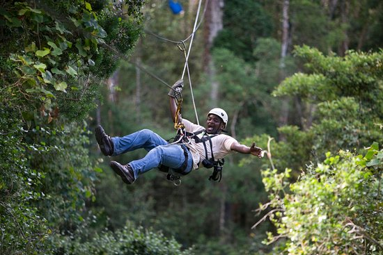 Storms River, South Africa: Tsitsikamma Canopy Tour
