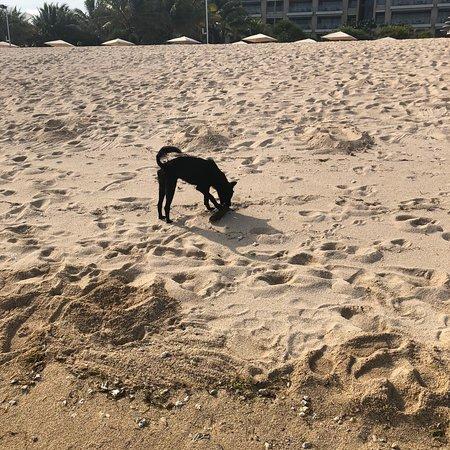 Playa no tan limpia..