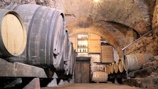 Botti di affinamento per i rossi d'annata Pinot Nero Castelsegonzano e Cabernet dello Scalco